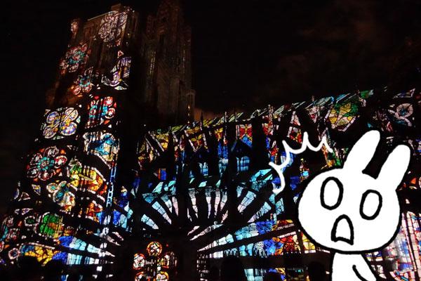 ものうさ アルザス ストラスブール大聖堂